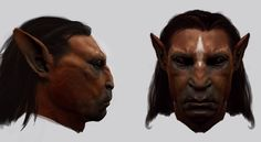 harry potter and the order of the phoenix - adam brockbank