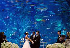 6 Amazing Aquarium Wedding Photos