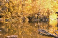 #River of #Fire by #Kaye_Menner #Photography Quality Prints Cards Products at: https://kaye-menner.pixels.com/featured/river-of-fire-by-kaye-menner-kaye-menner.html