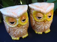 Pair of Vintage 1970s Era Owl Ceramic Salt and by thecherrychic -- teehehe they look like they stoned