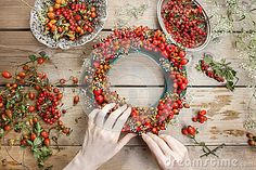 Florist At Work: Woman Making Rose Hip And Hawthorn Wreath - Download From Over 50 Million High Quality Stock Photos, Images, Vectors. Sign up for FREE today. Image: 43994956