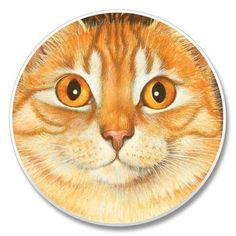 Orange Cat Coaster for Car - Cat Coasters, Owl, Bird, Orange, Cats, Animals, Gatos, Animales, Kitty Cats