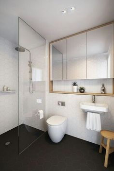 white hex wall tile - black penny tile floor tile, vanity that spans the width above sink and toilet (same layout)