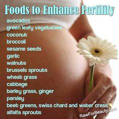 Natural fertility aids