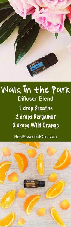 Walk in the Park doTERRA Diffuser Blend