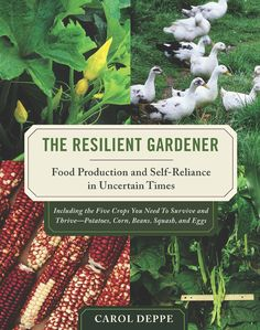 """In The Resilient Gardener scientist and gardener Carol Deppe combines her passion for gardening with newly emerging scientific information from many fields — resilience science, climate change, sustainable agriculture and more. In this book you'll learn how to garden in an era of unpredictable weather and climate change; grow, store and cook different varieties of her five """"key crops""""; and keep a home laying flock of ducks or chickens."""