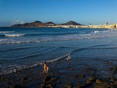 Las Palmas de Gran Canaria, Gran Canaria - Playa de Las Canteras by GRANCANARIA.COM, via Flickr