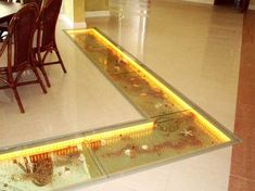 25 Glass Floor And Ceiling Designs Opening Enhancing Modern Home Interiors