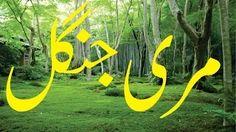 Asad786 - YouTube