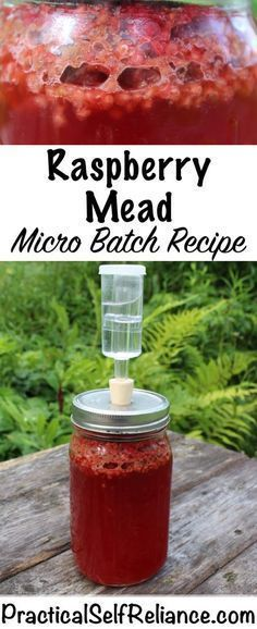 Raspberry Mead - Micro Batch Recipe — Practical Self Reliance