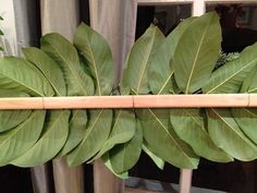 Magnolia leaves and ribbon stapled to a pieced of wood, which is then hung by florist wire out the windows -- perfect for our brick rancher where window boxes WOULD be if only we could get them to stay anchored in place!