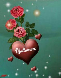 Anul Nou, Emoticon, Quran, Birds, Pictures, Thanks, Smiley, Bird, Holy Quran