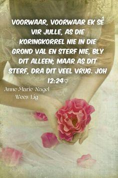 ♡ Afrikaans, My Passion, Writing, Blog, Inspiration, Biblical Inspiration, Blogging, Being A Writer, Afrikaans Language