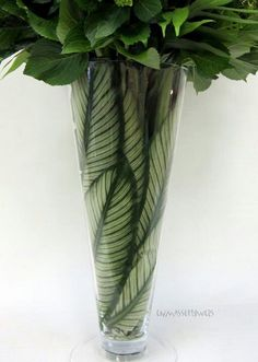 What to do with those clear vases.  Add a tsp of bleach to the water to delay decay.