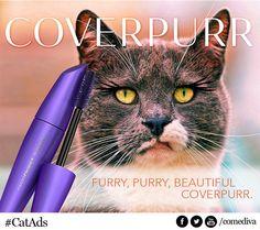 Si les grandes marques de produits cosmétiques étaient destinées aux chats..  http://iletaitunepub.fr/2013/08/08/si-les-grandes-marques-de-produits-cosmetiques-etaient-destinees-aux-chats/