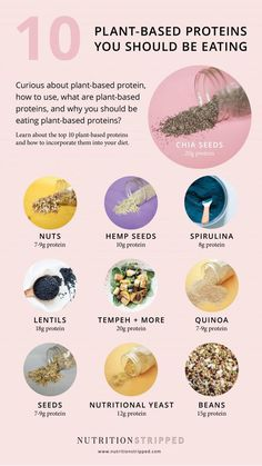 10 Plant-Based Protein Sources You Should be Eating Nutrition Stripped & 10 Plant-based Proteins You Should be Eating & From NS The post 10 Plant-Based Protein Sources You Should be Eating & Weight Loss Tips appeared first on Nutrition plans . Protein Muffins, Protein Snacks, Protein Dinner, Healthy Protein, High Protein, Healthy Fats, Healthy Juices, Whey Protein, Nutrition Chart
