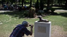 Serbian town honors dachshund Leo who died defending 10-year-old girl from another dog