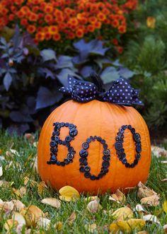 Buttoned-up Pumpkin