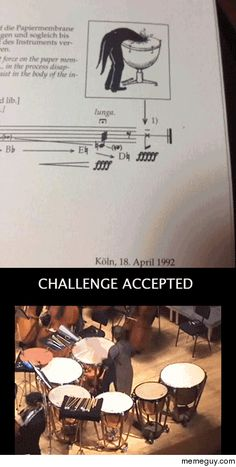 amusedmusic:  memeguy-com:  Challenge Accepted  This makes me cry.