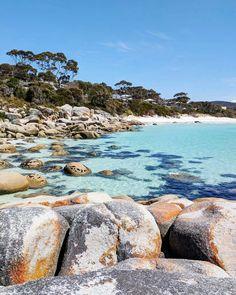 Binalong Bay, Tasmania Tasmania, Water, Travel, Outdoor, Instagram, Gripe Water, Outdoors, Viajes, Destinations