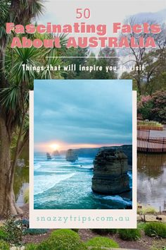 Be inspired to travel Australia with these fun and fascinating facts about the land downunder. #australiafacts #australiatravel #australiablog Travel Tours, Travel Info, Travel Advice, Travel Guides, Australia Travel Guide, Visit Australia, Beautiful Places To Visit, Cool Places To Visit, Amazing Places