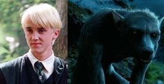 7 Unverified Theorys about Harry Potter - by the fans !