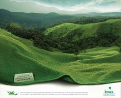 GreenTowel on Behance