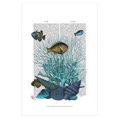 Fish Blue Shells and Corals by Fab Funky Unframed Wall Art Print