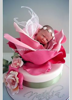Baby Fairy Rose Christening Cake, uniquely designed by EliteCakeDesigns Sydney! Visit our exclusive Christening Cake design Gallery Christening Cake Designs, Baby Christening Cakes, Baptism Cakes, Crazy Cakes, Fancy Cakes, Cute Cakes, Pretty Cakes, Gateau Baby Shower, Baby Shower Cakes