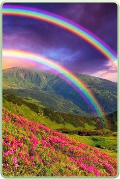 Double Rainbow  Wow.
