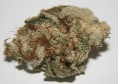 White Widow Marijuana Strain Review And Pictures