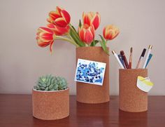 diy project: brittni's cork containers – Design*Sponge Cork Sheet, Diy And Crafts, Crafts For Kids, I Heart Organizing, Container Design, Dorm Decorations, Craft Projects, Craft Ideas, Creations