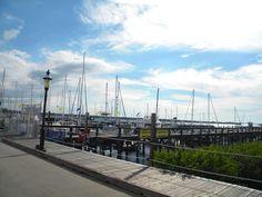 Florida's favorite live-aboard marina, Regatta Pointe Marina, Palmetto FL