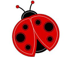 ladybug - If a young girl catches a ladybug and then releases it, the direction in which it flies away will be the direction from which her future husband will come. It is bad luck to kill a ladybug. Ladybug, ladybug, fly away home.  Your house is on fire,  Your children all roam.