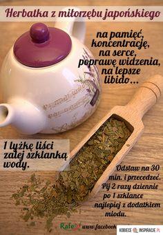 MIŁORZĄB JAPOŃSKI - Kobieceinspiracje.pl