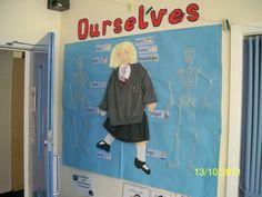 School Gallery : School Displays : Corridor Displays - Infants