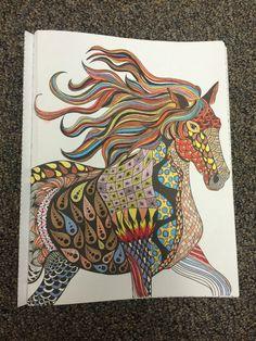 Cat Wonders Color Art For Everyone