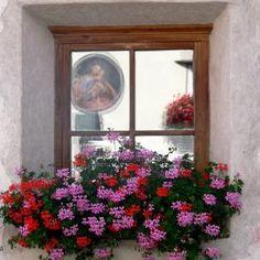 Window - Pixdaus