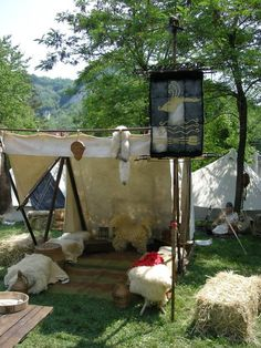 Chieftain Social Tent, Image from the group TEUTA LINGONES CINGHIALE BIANCO