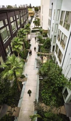Inspiration for a citygarden by Jeffrey Miller. Called: Pacific Cannery Lofts