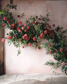 Floral Wedding, Wedding Flowers, Perfect Wedding, Dream Wedding, Eucalyptus Bouquet, Christmas Tea, Wedding Ceremony Decorations, Garden Wedding, Dried Flowers