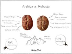 I dont think Ive had a robusta coffee before. For those who have do you prefer arabica or robusta? Courtesy of Arabica vs. Coffee Barista, Coffee Cafe, Coffee Drinks, Coffee Theme, Tostadas, Arabica Robusta, Cafe Rico, Coffee Shot