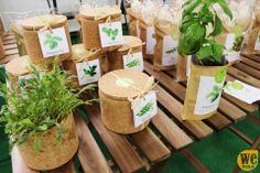 Grow cork Life in a bag by WeBraga
