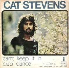Cat Stevens, Dance, Cats, Movie Posters, Movies, Dancing, Gatos, Films, Film Poster