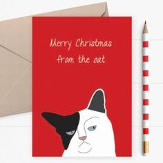 Ha ha have you see this card from @dickensink! Perfect for all you #caturday fans for Christmas! #lilimimakers