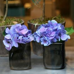 hydrangea. Blue/purple kind. will be the blend between blues and purples