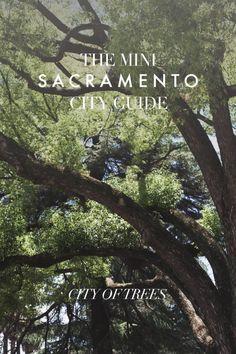 The Mini Sacramento City Guide
