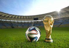 Desde los 70's la compañía alemana Adidas ha estado a cargo de producir el elemento principal del mundial, el balón. Subsecuente al Jabulani de Sudáfrica y continuando con la tradición de nombrarlo en relación al país anfitrión, el Brazuca tiene un diseño con listones de colores que simbolizan las pulseras tradicionales de brasil.