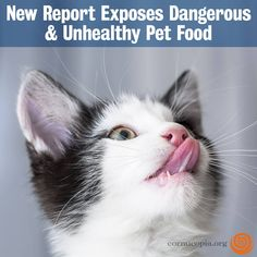 NEW REPORT: The Cornucopia Institute released a new report shedding light on serious problems in pet food industry regulations and how specific loopholes allow for the use of questionable ingredients that could negatively impact companion animal health.