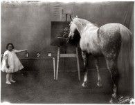 Horse Math - Retronaut - See the past like you wouldnt believe